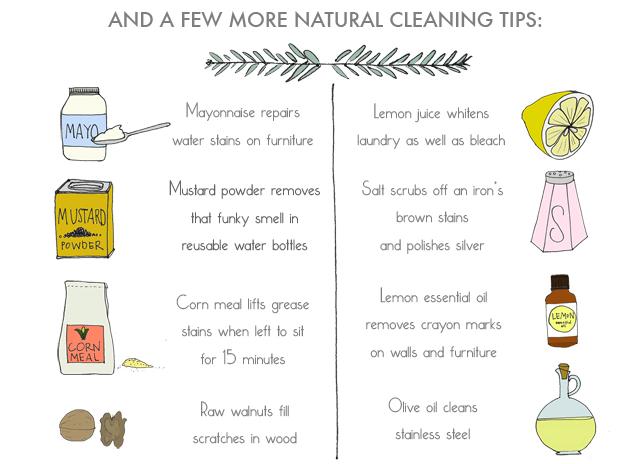 Natural Cleaning tips-Ananasa