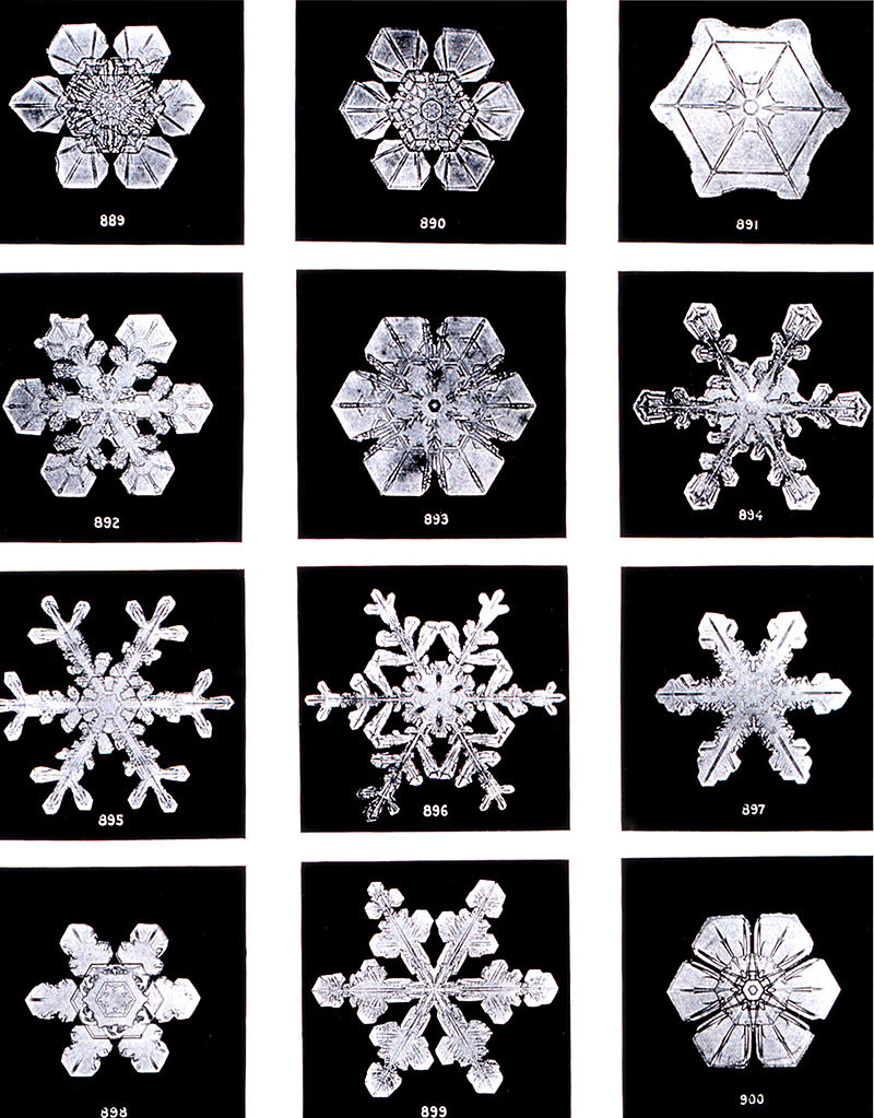800px-SnowflakesWilsonBentley